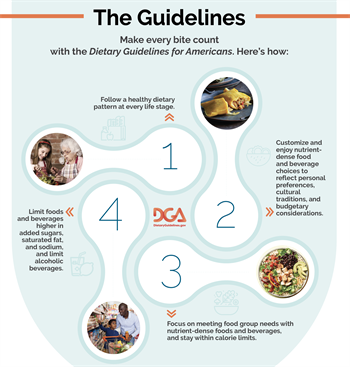 DGA_2020-2025_The4Guidelines