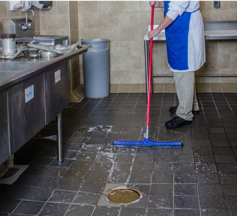 Floor drain cleaning