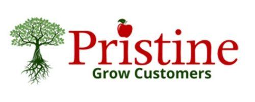 Pristine Infotech