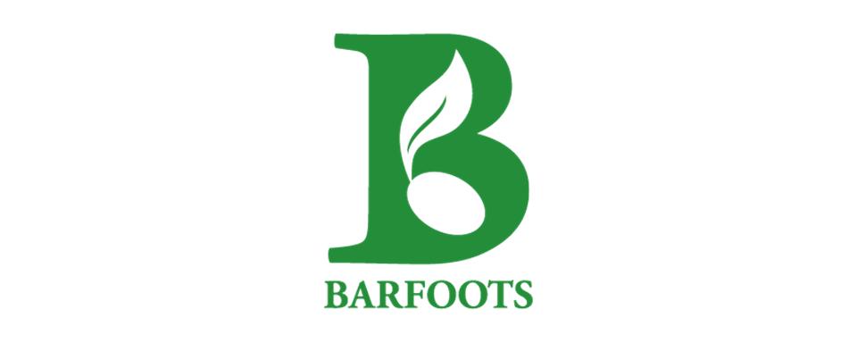 Barfoots UK logo - in 5x2 Frame